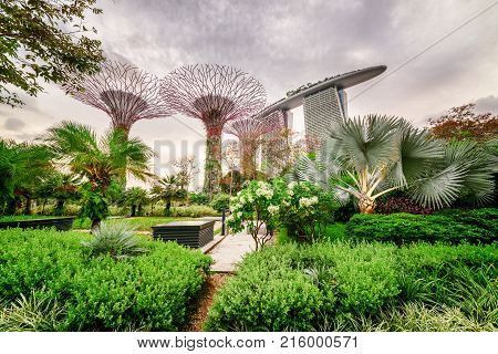 Amazing View Of Gardens By The Bay In Singapore