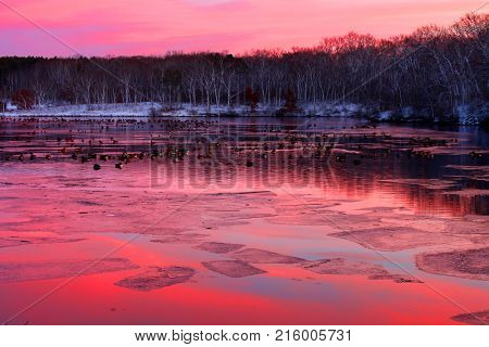Flock of geese under vivid sunset at Rock Cut State Park in Illinois