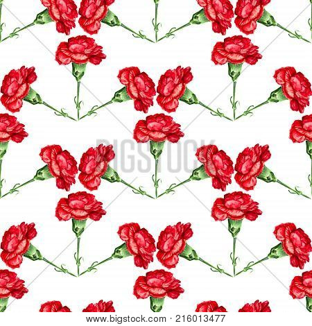 Seamless Red Carnation
