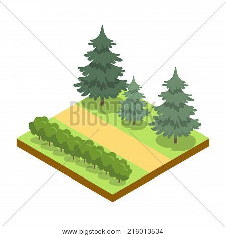 Park alley with bushes and pines isometric 3D icon. Decorative plant and green grass vector illustration. Nature map element for summer parkland landscape design.