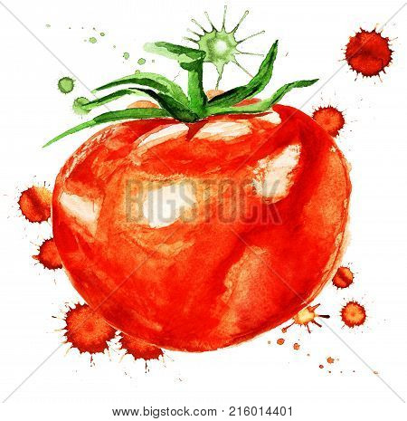 Watercolor Image Of Tomato With Paint Blots On White Background