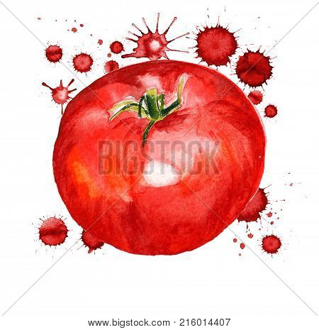 Watercolor Image Of Red Tomato With Paint Blots On White Background