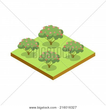 Apple trees isometric 3D icon. Public park plant and green grass vector illustration. Nature map element for summer parkland landscape design.