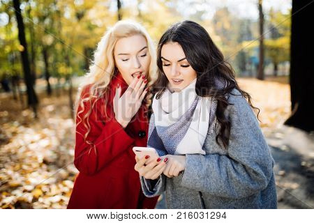 Euphoric Friends Watching Videos On A Smartphone And Pointing At Screen Surprised In Autumn Park