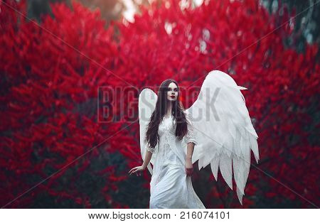 Art photo of a Angelic beautiful woman. A girl with angel wings and a white dress near blood-red trees. Creative colors and Artistic processing.