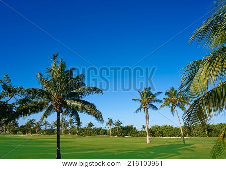 Cancun Mexico Kukulcan boulevard golf course at Hotel Zone in Mexico poster