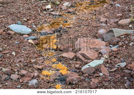 Liquid gold - stream disappearing at the canyon bottom - Ruby Wash in Red Mountain Open Space, northern Coloradog