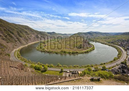 Bow of the River Moselle and vineyards at the Calmont hills near village of Bremm