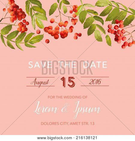 Wedding Invitation Template. Floral Save the Date Card with Rowan Berry. Decoration for Marriage Party Celebration. Vector illustration