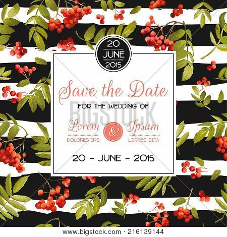 Wedding Invitation Template. Floral Greeting Card with Rowanberry and Leaves. Decoration for Marriage Party Celebration. Vector illustration
