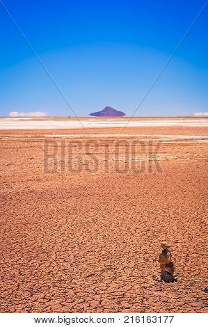 Dry and desolate landscape near Salar de Uyuni in the southern part of bolivian Altiplano, Bolivia, South America