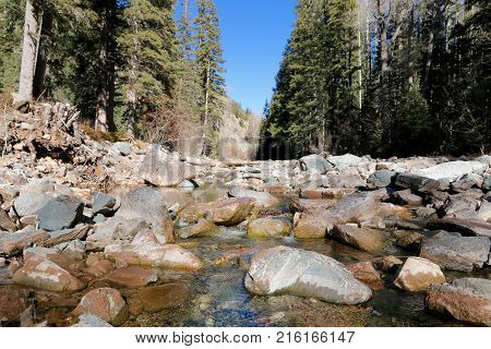 Lime Creak Trail in San Juan National Forrest in CO