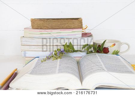 education dictionary with all book and stationery for study on table white