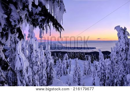 Vancouver skyline from Cypress Mountain Park. Trees covered with snow and icicles. Pacific ocean Howe Sound and Vancouver Island view form above.