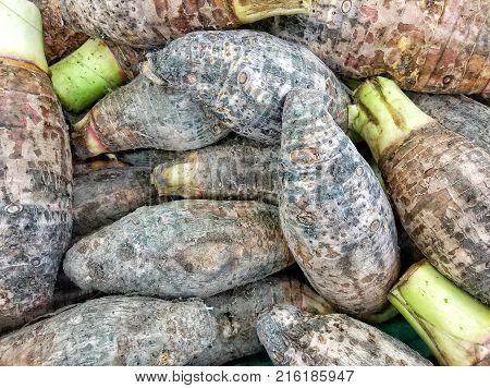 Fresh organic potatoes or taro sell at farm, Food background