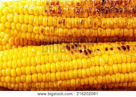 Grilled sweet corn cobs as background Yellow food background