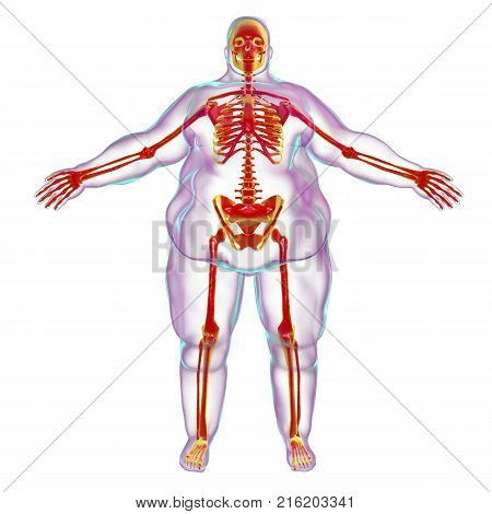 Obesity problem conceptual image, 3D illustration showing normal skeleton inside obese male body