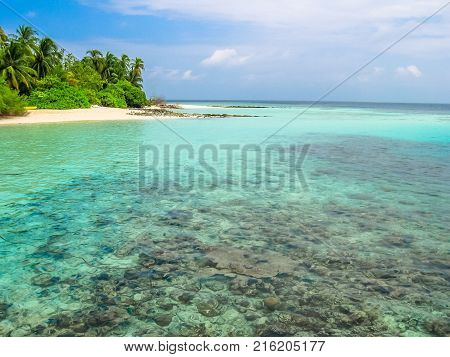 Maldives, Indian Ocean. Palm trees on the white sand beach. Turquoise water of the lagoon paradise. Rocks in the sea and coral reef. North Male Atoll Asdu.