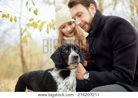 Couple Walking With Dog In The Park And Hugging. Autumn Walk Men And Women With A Dog. Romance And L