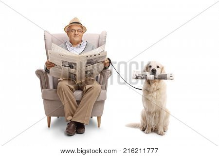 Mature man seated in an armchair holding a newspaper and a labrador retriever with a newspaper isolated on white background