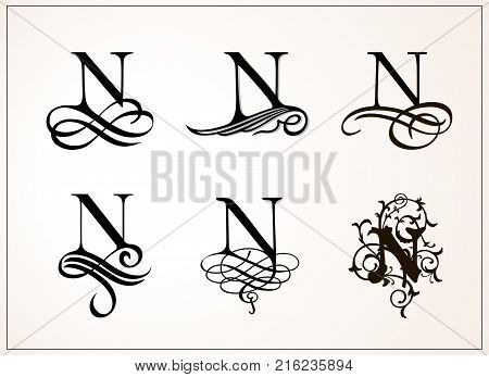 Vintage Set . Capital Letter N for Monograms and Logos. Beautiful Filigree Font. Victorian Style