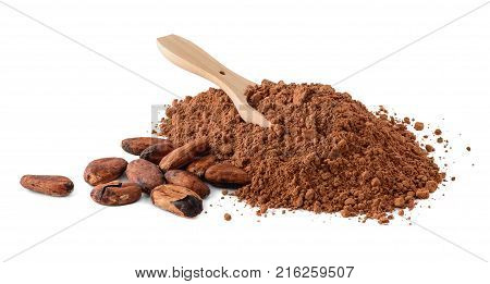 Cocoa beans and heap of Cocoa powder with small wooden scoop in it isolated on a white background.