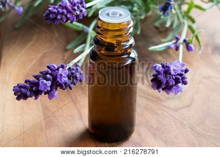 A dark bottle of lavender essential oil with fresh lavender twigs on a wooden background