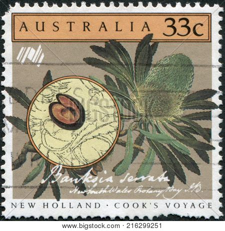 AUSTRALIA - CIRCA 1986: A stamp printed in Australia, is devoted to Cook's New Holland Expedition, depicted Banksia serrata, circa 1986