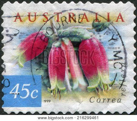 AUSTRALIA - CIRCA 1999: A stamp printed in Australia, shows Correa reflexa, circa 1999