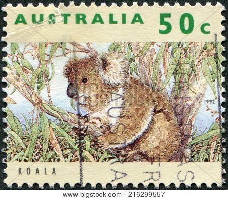 AUSTRALIA - CIRCA 1992: A stamp printed in Australia, shows the Koala (Phascolarctos cinereus), circa 1992