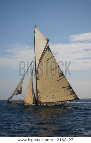 Sailing Boat In Regata