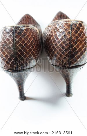 Pair of vintage women's snakeskin shoes viewed from the rear isolated on white vertical aspect