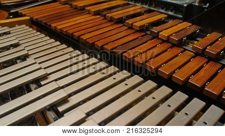 Close-up of xylophone and vibraphone standing near