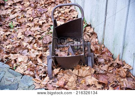 Small old rusty  cart laying in leaves