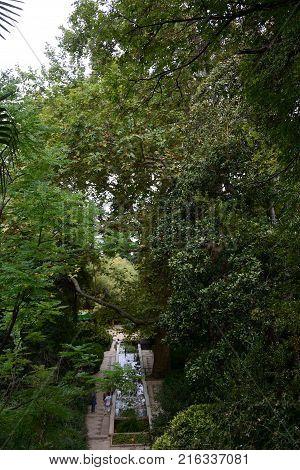 YALTA CRIMEA - OCTOBER 10 2017: Beautiful places of the Nikitsky Botanical Garden Yalta Crimea