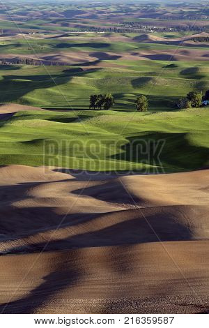 Rolling hills in the Palouse region of Washington State America from Steptoe Butte