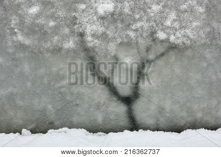 Ice surface looks as winter tree. Imaginary winter landscape with tree on the ice surface with thawed patch.