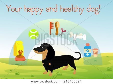 Vector illustration dog on green grass with set of accessories for dogs. Collection of pet symbol. Healthy and happy dog concept in flat cartoon style