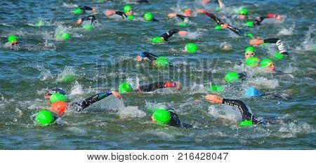GRAFHAM, CAMBRIDGESHIRE, ENGLAND - MAY 21, 2017:  Competitors swimming in at the end of the swimming stage at the beginning of Triathlon.
