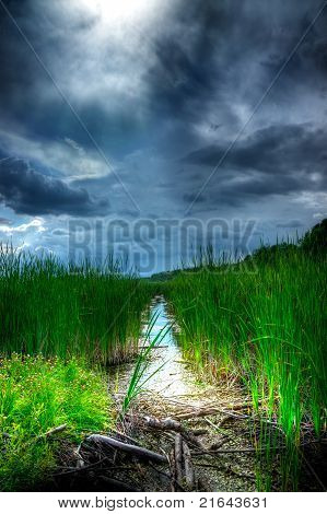 Stormy Sky Over Illuminated Wetlands