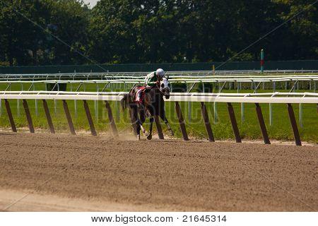 Jockey With Huge Lead