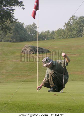 Golfer Golfing Putting Golf Course Green