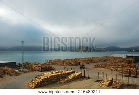 A dock in a bay filled with piles of logs ready for export. A piece of machinery used for moving the logs is visible. The sky is overcast and a town is in the distance.
