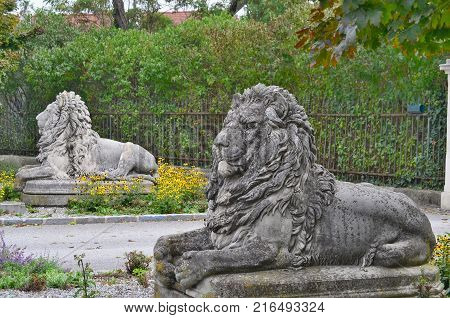 statues of lions the entrance to the castle the town of Horn Austria