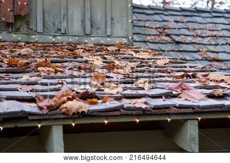 Fall leaves laying on rustic old roof