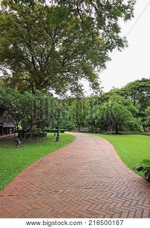 Vertical Photo of Terracotta Brick Paver Walkway in the Green Garden, Thailand