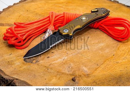 Folding knife with stap cut and cullet.