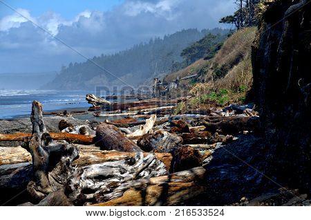 Driftwood logs piled randomly on a beach south of Forks Washington