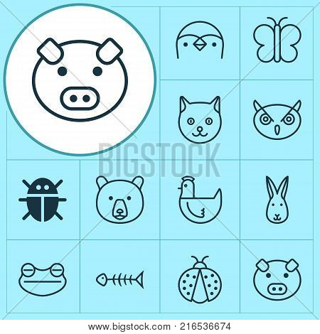 Animal icons set with bunny, moth, kitten and other hen elements. Isolated vector illustration animal icons.