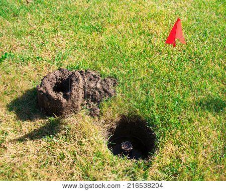 Soil dug around sprinkler head with marker flag